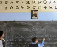 """بلاغ صحافي  في إطار مشروع """"حــصاد تــينمل"""": اليوم الدراسي حول تدريس اللغة الأمازيغية"""