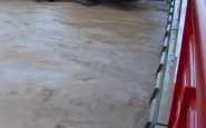 فيضان وادي أفتيس يجرف شخصا بتنغير