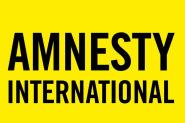 منظمة أمنستي:  وعدم التمييز بين حرية التعبير وبين الجرائم المرتبطة بالتعبير
