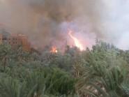 تنغير :حريق يلتهم أشجار النخيل بمنطقة إماريغن ( قرب عين السمك المقدس)