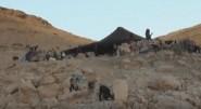 ڭـولميمة: أثار الجفاف على الرحل بعد تأخر التساقطات (ربورطاج القناة الثامنة)