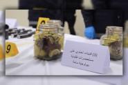 مواد سامة بيولوجية فتاكة ضمن المواد المشبوهة التي حجزت بمدينة الجديدة على خلفية تفكيك شبكة إرهابية