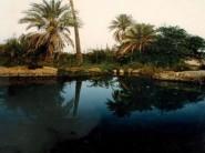 الريصاني : المسؤولون يتماطلون في وضع حد للفوضى التي تعرقل التوزيع العادل لمياه الري على الاراضي الفلاحية