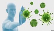 جهاز المناعة.. حصن الجسم