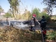 تنغير : رجال الوقاية المدنية يفلحون من إخماد حريق باحد حقول القصب المجاورة لوادي تودغى