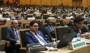 """المجلس التنفيذي للاتحاد الإفريقي يؤكد عزمه القوي على """"إسكات صوت الأسلحة في إفريقيا بحلول عام 2020"""""""