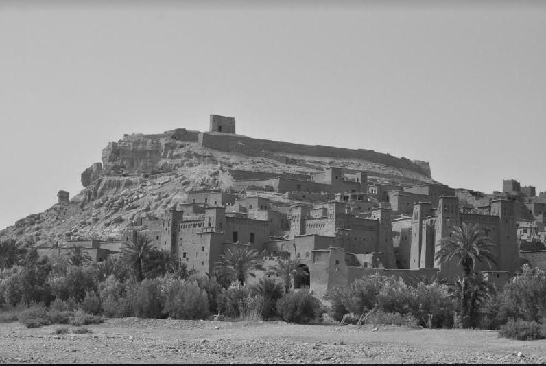 الفنان البصير يستعد لمعرض فردي مصغر بعنوان «تاريخ يشاركنا الحياة» بمدينة الالف قصبة وقصبة