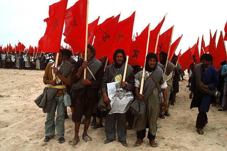 قناة تمازيغت تستضيف في برنامج خاص متطوعين من اقليم تنغير شاركوا في المسيرة الخضراء