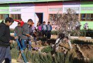 تنغير : مجموعة مدارس أيت تومرت تحتفل باليوم الوطني للتعاون المدرسي