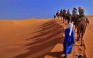 مرزوكة … المنعشون السياحيون يكذبون ويتستنكرون ما تم نشره حول استهداف مخيم سياحي بجماعة الطاوس