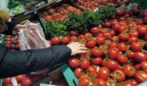 السماسرة سبب ارتفاع أسعار الطماطم في الأسواق والمغاربة يشتكون …