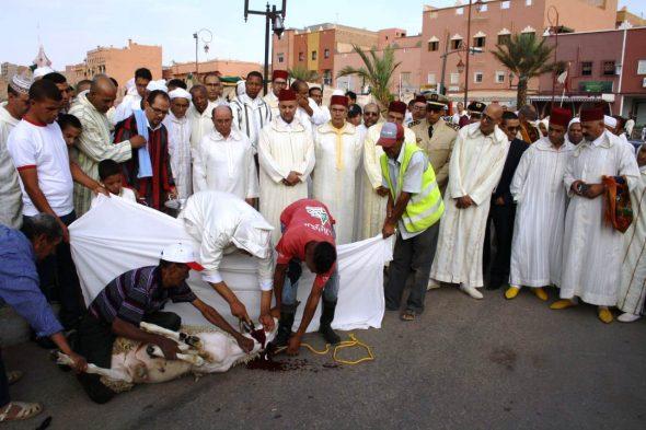 تنغير : عامل الإقليم رفقة جموع المصلين يؤدون صلاة عيد الأضحى المبارك.